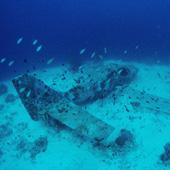 Sunken plane at Copton Point
