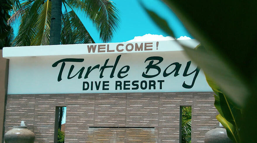 Turtle Bay Video