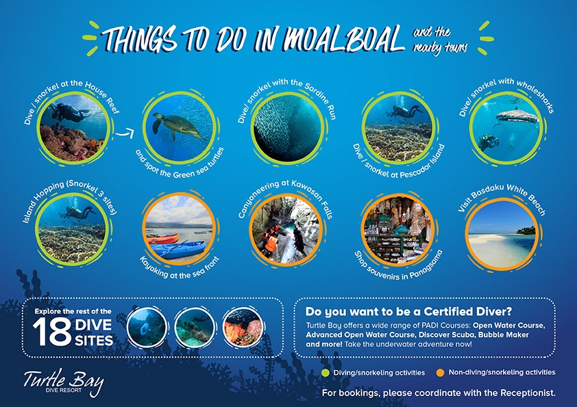 Things To Do In Moalboal_website