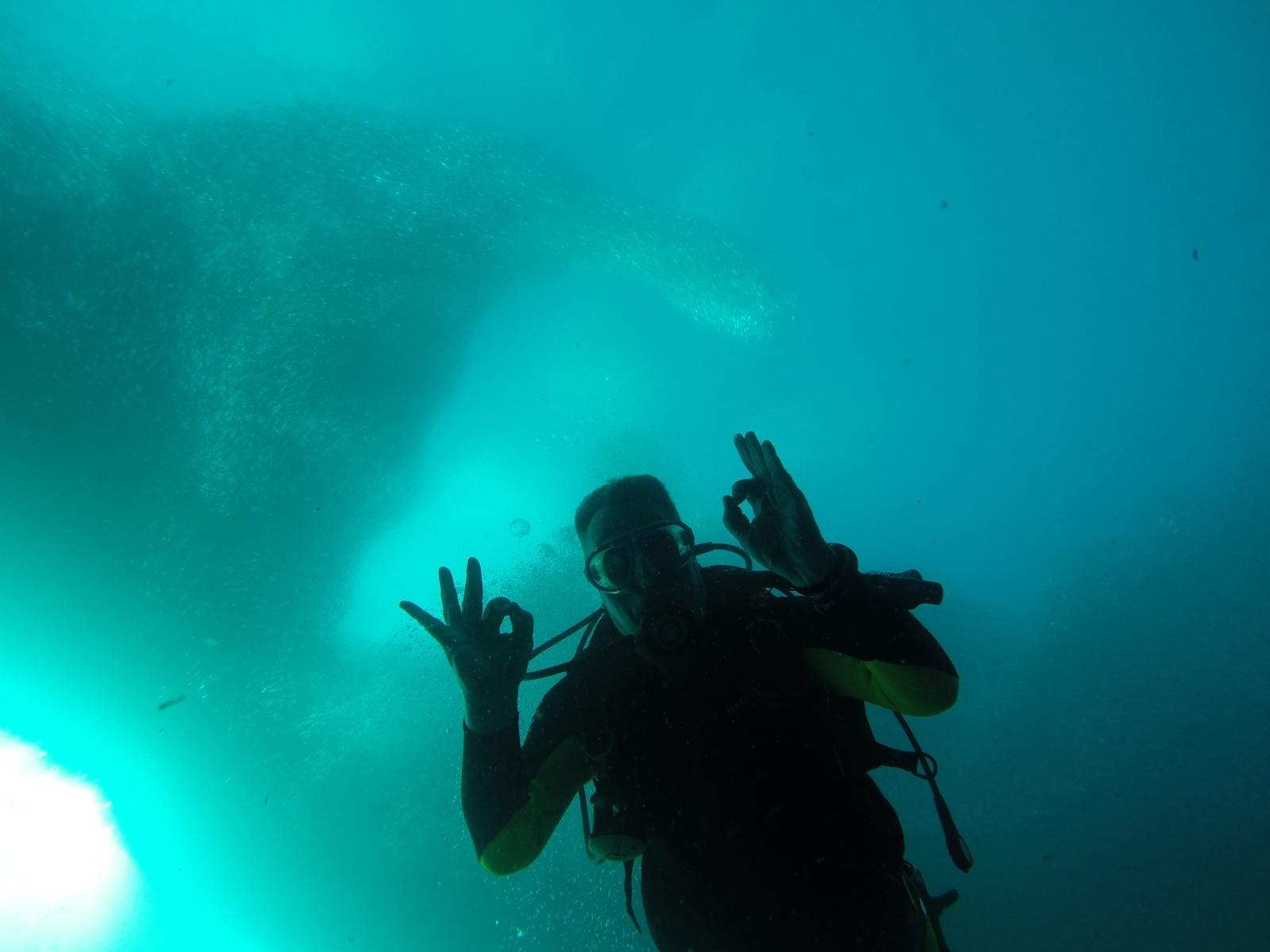 Turtle Bay Dive Resort Guests