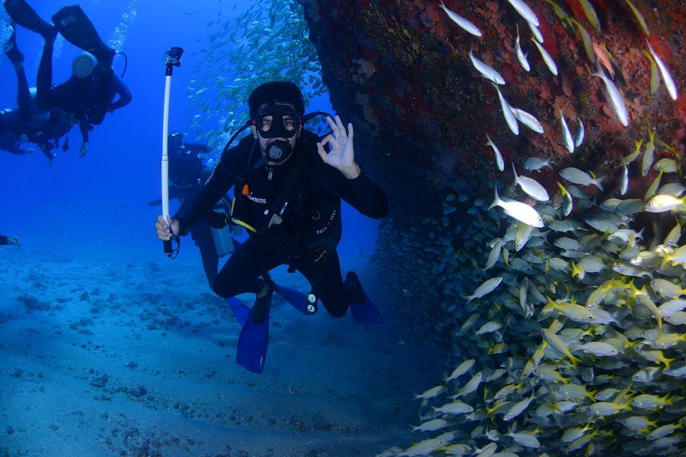 TUrtle Bay Scuba diver